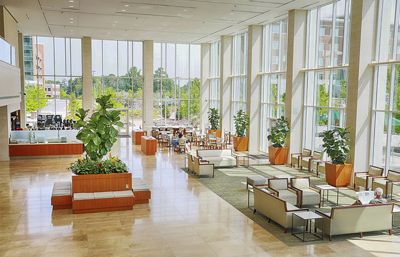 The lobby of the new LMC tower with huge class windows wall to wall letting in lots of light, offering couches and armchairs surrounded by greenery and a full view of the courtyard.